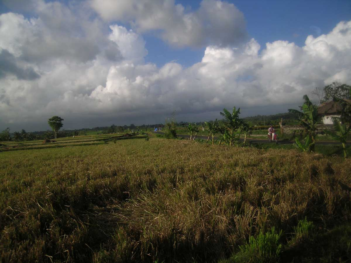 Bali Indonesia Travel Information And Free Pictures
