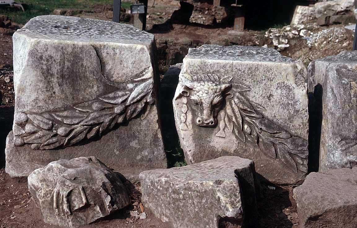 روما - ROME Ruins-roman-forum
