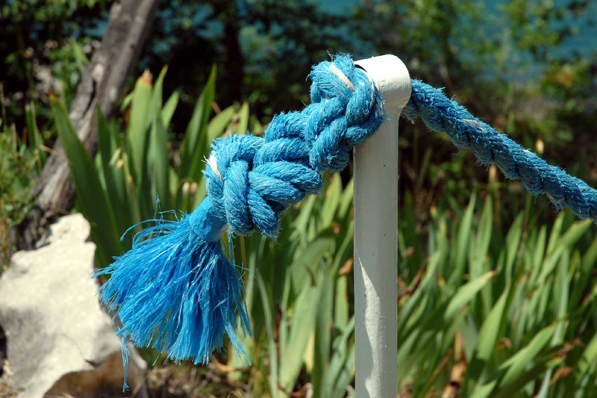 http://www.bigfoto.com/miscellaneous/photos-02/blue-rope-6b3.jpg