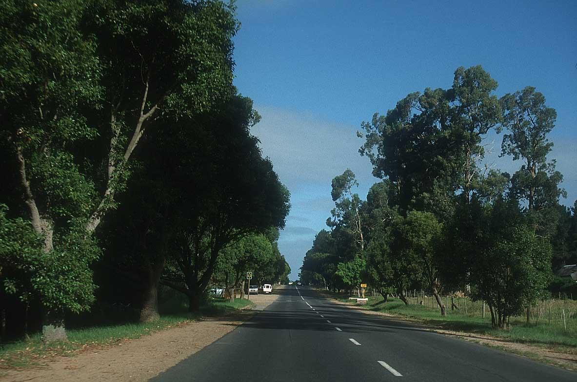 السياحه في جنوب افريقيااااا 50-south-africa.jpg