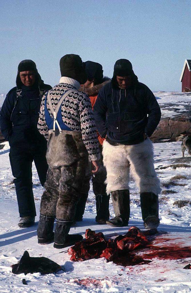 Eskimos pictures