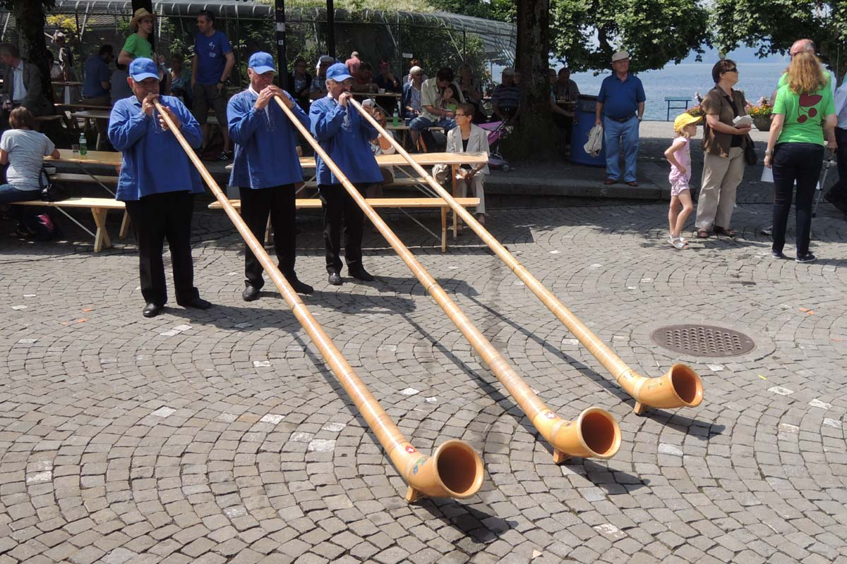 alphorn music instrument