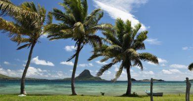 Fiji travel info