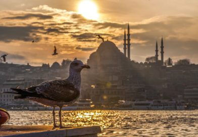 Where to Stay in Istanbul?